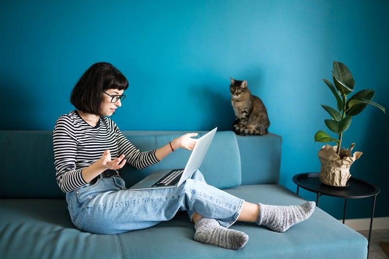 Кошки уважают ваше личное пространство.