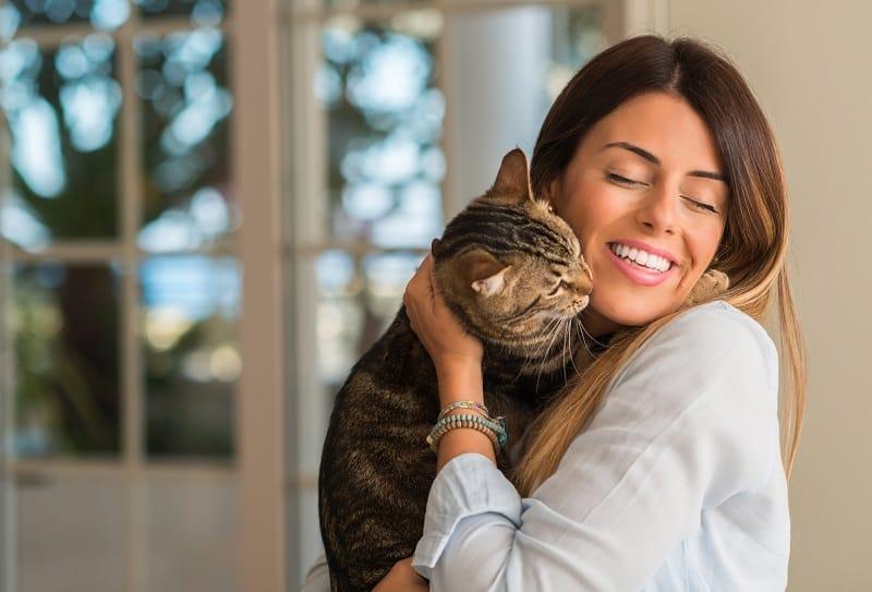 Как узнать, что ваша кошка - остров Манкс