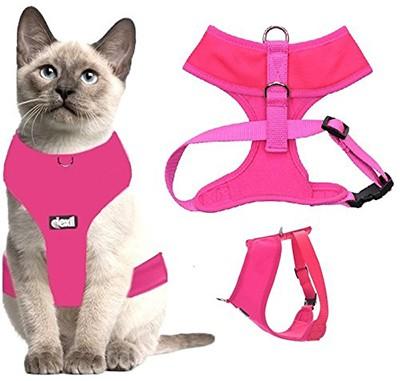 Узнайте, как выбрать лучшую шлейку для кошек, и наши обзоры лучших вариантов на рынке.