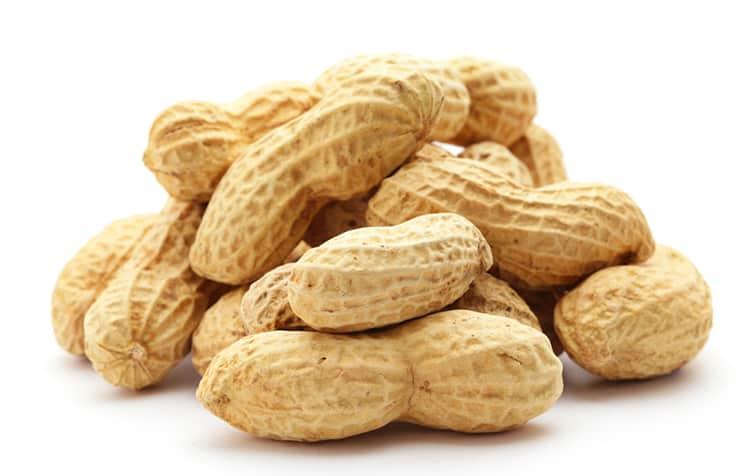 Вы когда-нибудь задумывались, вреден ли арахис для вашей кошки? Прочтите нашу статью, чтобы узнать…