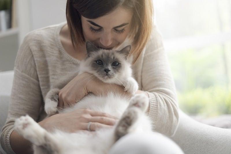 Почему кошки хорошо пахнут?