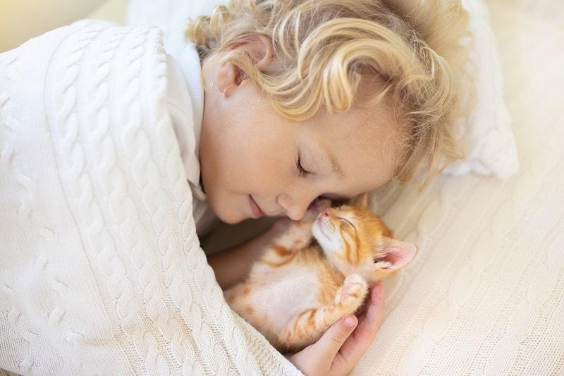 Почему кошки попадают вам в лицо, пока вы спите