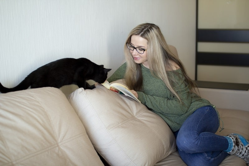 Понимают ли кошки английский язык